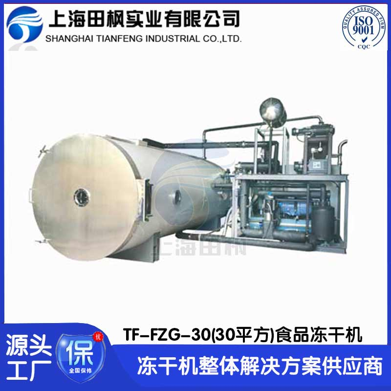 TF-FZG-30 隻果凍干機 芒果凍干機 榴蓮凍干機 上海田楓30平方香蕉片凍干生產設備